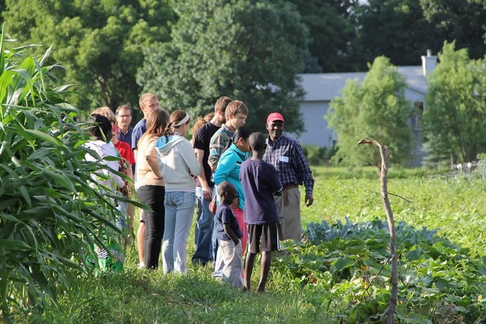 Global Greens Farm